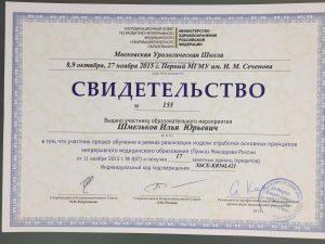 Свидетельство Шмельков Илья Юрьевич Московская Крологичевская Школа